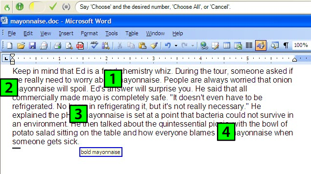 Example of multi match in Dragon NaturallySpeaking 11 editing and formatting of text